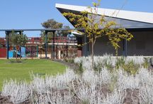 School Landscaping | TDL / Landscaping Primary schools