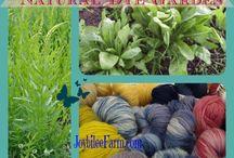 Verf planten / Verf planten