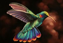 Colorful Birds / by Cheryl Weller
