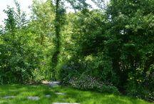 My Gardens / Moje ogrody /  projekty i realizacje ogrodów, garden designs