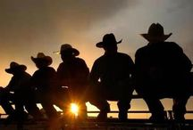 Horses, Cowboys/girls / Horses Cowboys/girls