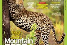 Southern African Wildlife Magazines / Wildlife Magazines covering Southern African
