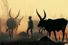 African ceremonies