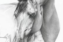 Obrázky koní, pegasů a jednorožců