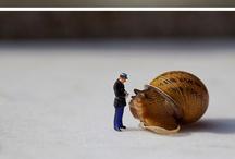 miniature scenes