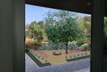 M and K Plants Sanctuary Garden
