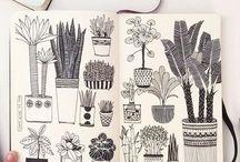 Illustration botanical