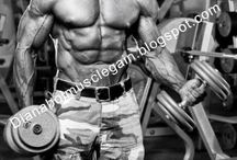 Bodybuilding / Dianabol Muscle Mass Gains - Articles for updates and news about Dianabol muscle gain and getting lean muscle mass.