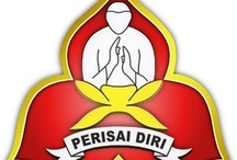 martial arts / silat. perisai diri. how really love it is
