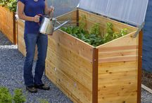 Elevated Garden Beds (Ideas)