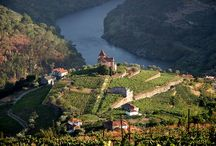 Port Wine / For the love of port and the Douro Valley, the site of our third movie in the series —filming now — A Year in Port Wine Country