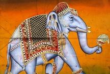 Indian Animal