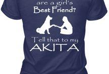 Akita stuff