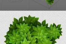OBS - Foliage