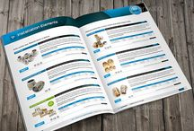 Layout for industrial brochure