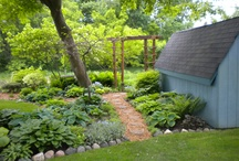Shade Gardening / by Patti Renegar-Fay