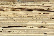come togliere tarme dal legno e restauro mobili