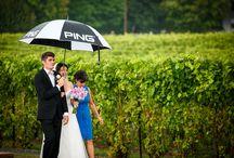 Winery Vineyard Weddings