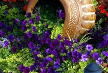~Gardening Ideas and Helpful tips~ / ~Can you Guess I Love Purple~ / by Sandra Williams Smith