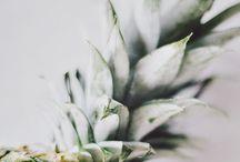 Pastel ✨