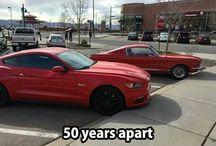 auto/cars