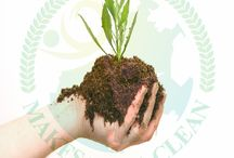 Best Organic Fertilizers / While most of the fertilizers are obtained through various minerals or are produced by the industrial processes, the Best Organic Fertilizers are produced naturally. One of the examples of a best organic fertilizer is night soil.