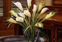 Beautiful Flowers / by Minette Marcelli