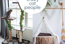 Cat DIY
