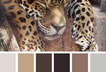 Colour palette favs