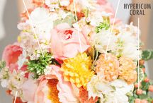 Coral & Peach Inspirations / Get inspired by this  trend and flowers with coral and peach colors.