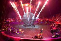 Ringley Bros. And Barnum & Bailey Presents Circus Xtreme
