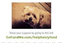 HelpHenryFund