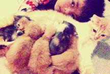 My kitten / Lutunaah