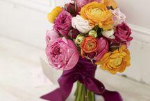 Florals / by Nikki Dziedzic