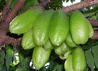 Local Pickle (Bilimbi)