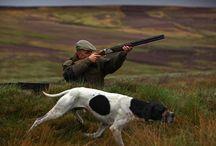 Jacht en jachthonden