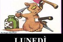 LUNEDÌ ...MONDAY!