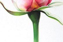 Розы. Декупаж
