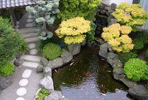 garden / inspiring garden design & ideas / by JPoeloeng