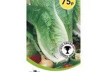 Wilko   September Garden To dos / Whether you're planting for the summer, raking away the leafs or keeping your greenhouse heated, we have all you need to tick of your garden to dos
