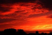 Sky Watching / by Lyn Thurman