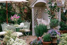 Garden inspiration / Ideas to create an English country garden