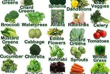 Food- Alkaline diet