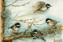 duranteillustrations / illustrazioni naturalistiche