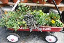 Rustic Planters / find them at the dump, reuse, reduce, recycle.