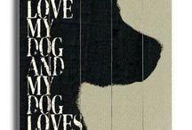 ❤️ my dog