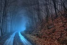 Country Roads, take me home... / by Holly Atkins
