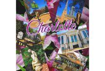Charlotte North Carolina Travel Souvenirs