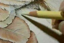 Painting tutorials