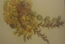 イラスト / 時間のあいまに、少しづつ描いて趣味にしようかな✩